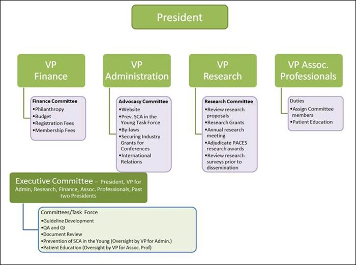 Committee-Structure